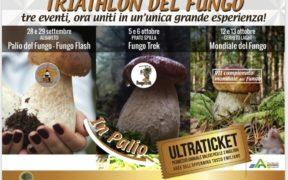 mondiale del fungo